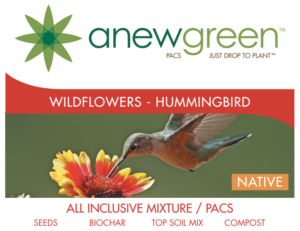 hummingbird_seedpacs